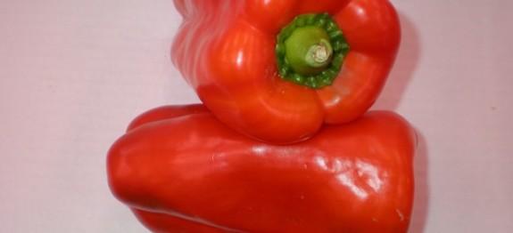 Pimiento rojo - Recetas de cocina RECETASonline