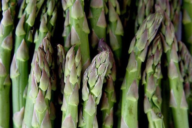 esparragos - Recetas de cocina RECETASonline
