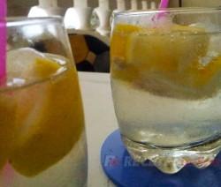 Gintonic estilo mojito - Recetas de cocina RECETAS online
